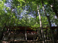 Restoran Biogradsko jezero