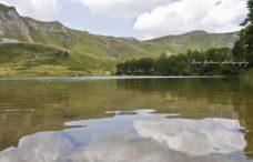 Pešića jezero-izvor u blizini jezera