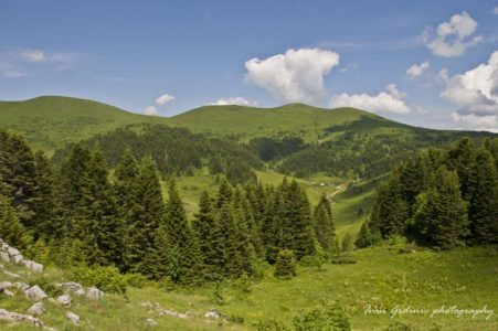 Dolovi-Lalevića-1200x797-1024x680